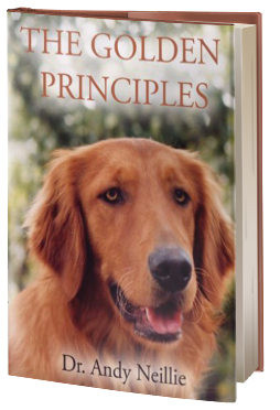 The Golden Principles 1st Edition by Dr. Andy Neillie